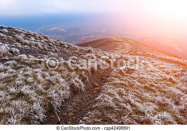 Landscape - csp42498891
