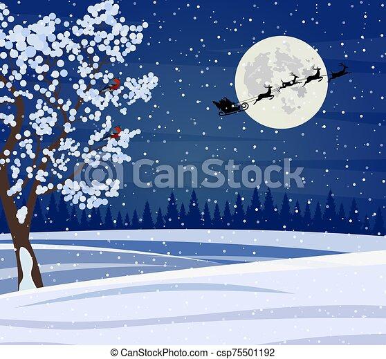 paisaje, noche, navidad - csp75501192