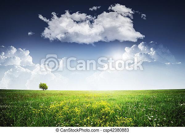 Landscape - csp42380883