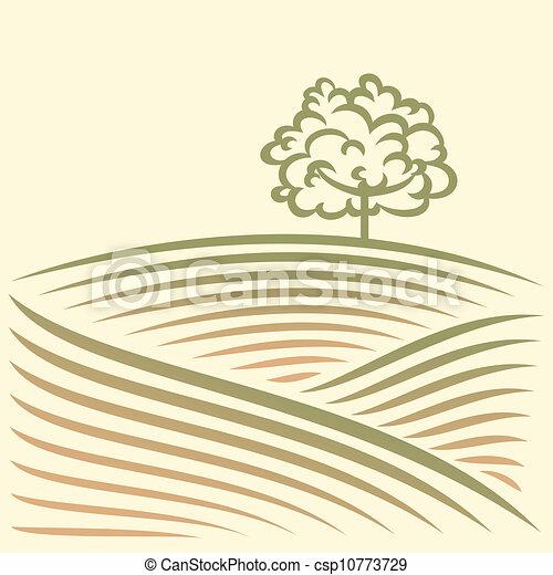 Paisaje rural con campo - csp10773729