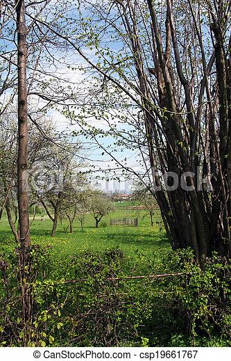 paisaje rural - csp19661767