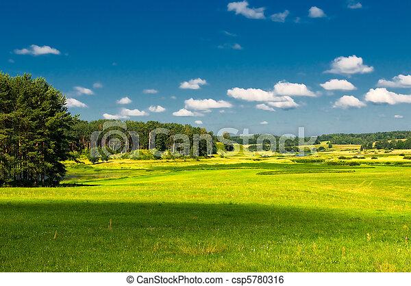 paisaje rural - csp5780316