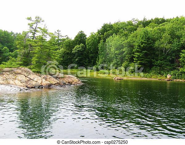 paisaje verde - csp0275250