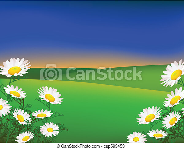 paisaje verde - csp5934531