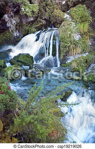 paisaje, zealand, fabuloso, magnífico, nuevo - csp19219026