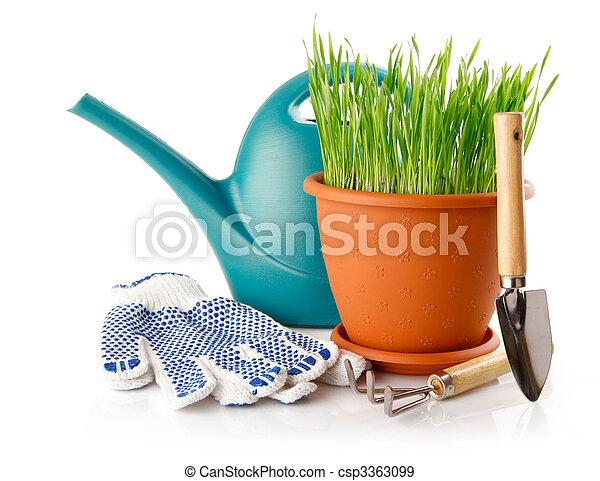 Hierba verde en la olla con herramientas y guantes - csp3363099