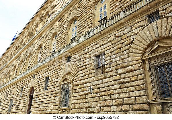 Palazzo Pitti Florence - csp9655732