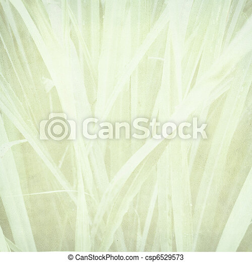 Pale Grass Print On Paper Pale Lemongrass Print On Paper Textured Background Canstock