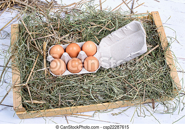 palha, caixa papelão, ovos, seis - csp22287615