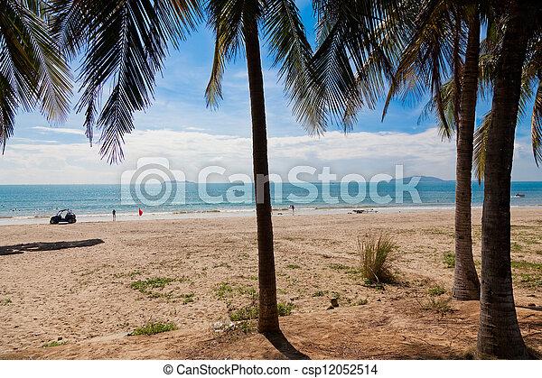 palm beach - csp12052514