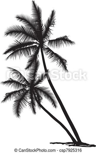 Palm - csp7925316
