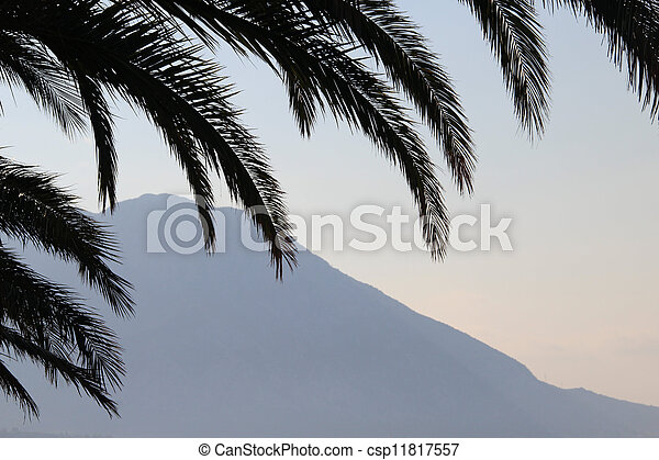 Palm leafs and sea in the evening, sunset - csp11817557