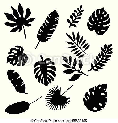 palm leaves silhouettes set isolated on white background palm leaf clip art printable palm leaf clip art outline