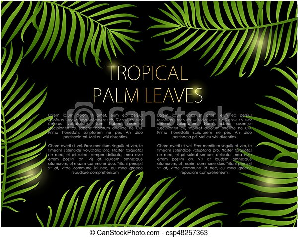 Palm Leaves Vector Background Palm Leaf Vector Background Green Leaves On Black Background With Place For Your Text Canstock Tropical leaf border, nature summer frames and luxury palm leaves borders vector design background. https www canstockphoto com palm leaves vector background 48257363 html
