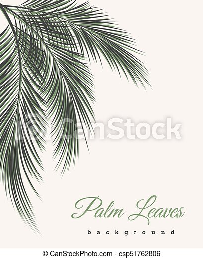 Palm Leaves Vintage Background Palm Tree Leaf Feathers Pattern Vector African Or Brazilian Wallpaper With Text