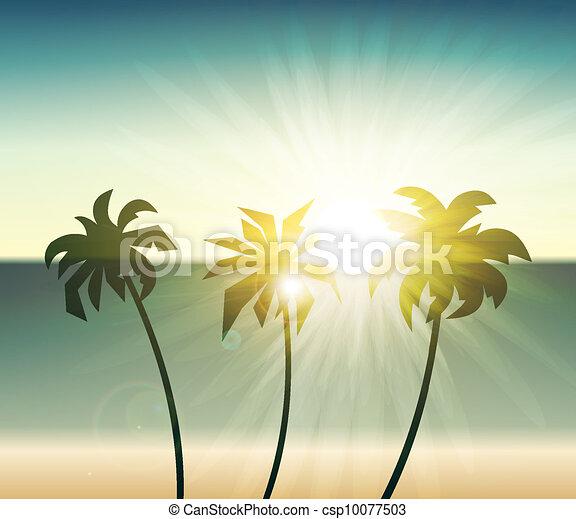 palm, silhouette, ondergaande zon , bomen - csp10077503
