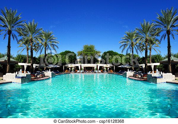 palm, slå samman, träd, simning - csp16128368