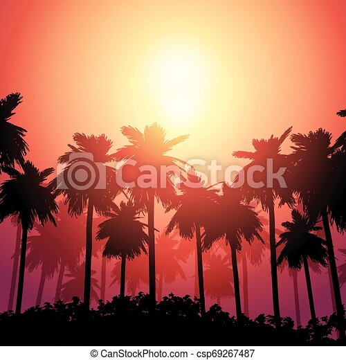 Palm tree landscape against sunset sky - csp69267487