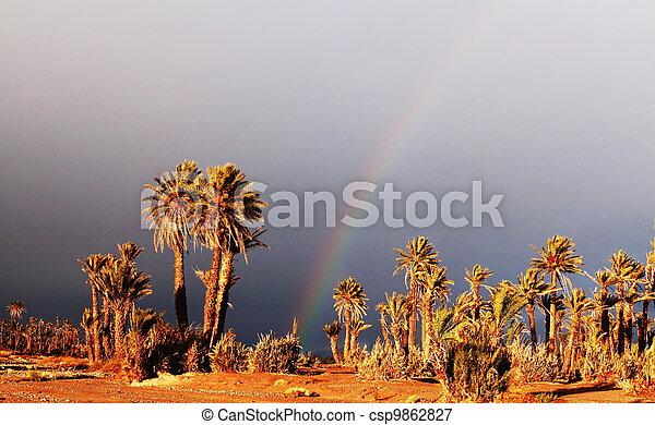 Palm-tree - csp9862827