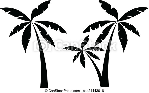 palm tree vector clip art search illustration drawings and eps rh canstockphoto com palm vector kayak palm vector png