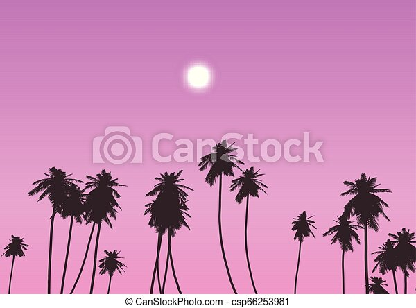 palm trees against sunset sky 0802 - csp66253981