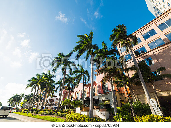 Palm trees and elegant buildings in West Palm Beach - csp83705924