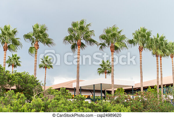 Palm trees and hotel in the park. - csp24989620