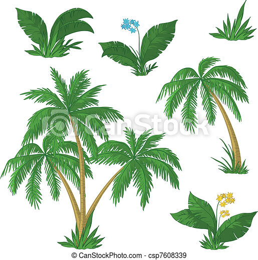 Palm trees, flowers and grass - csp7608339