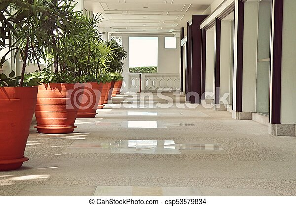 Palm trees in the building - csp53579834