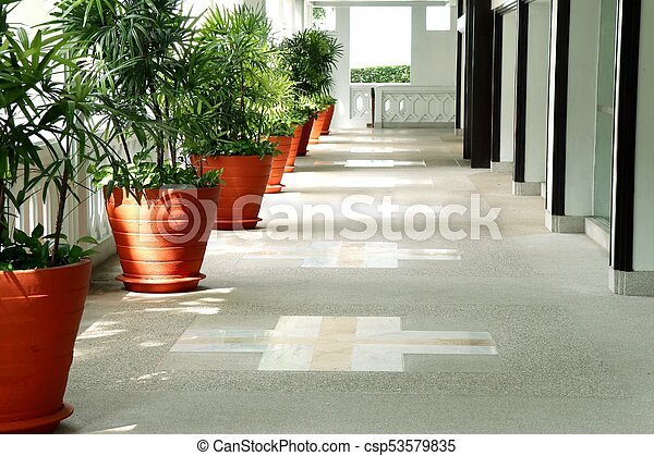 Palm trees in the building - csp53579835