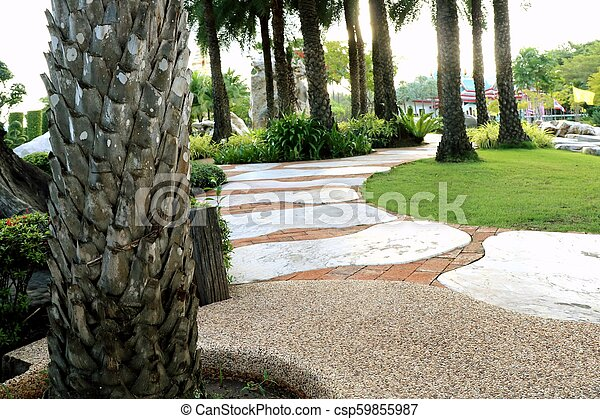 Palm trees in the park pathway - csp59855987