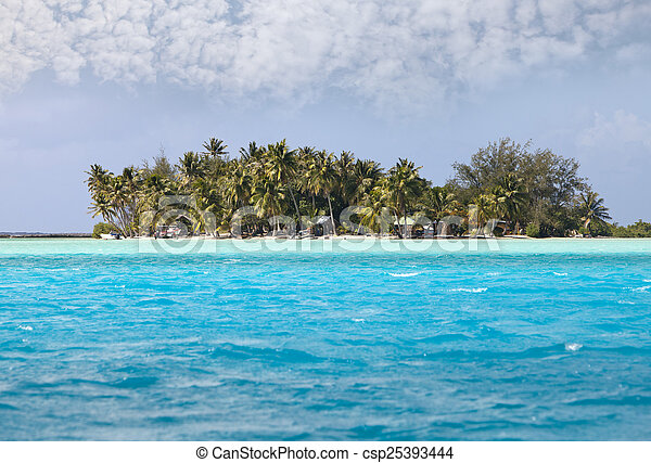 Palm trees on island in the sea - csp25393444