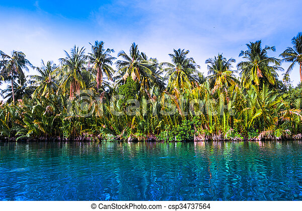 Palm trees on sea shore at beautiful sunny day. - csp34737564