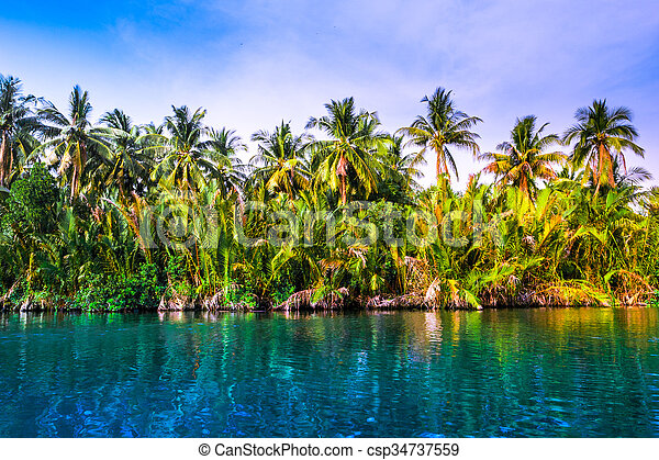 Palm trees on sea shore at beautiful sunny day. - csp34737559