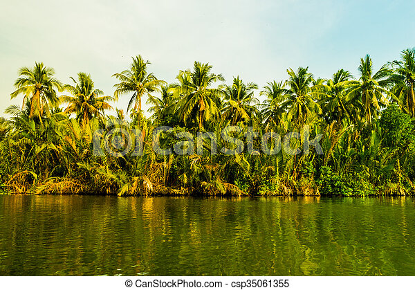 Palm trees on sea shore at beautiful sunny day. - csp35061355