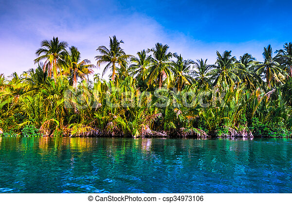 Palm trees on sea shore at beautiful sunny day. - csp34973106