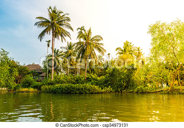 Palm trees on sea shore at beautiful sunny day. - csp34973131