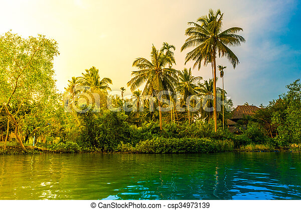 Palm trees on sea shore at beautiful sunny day. - csp34973139