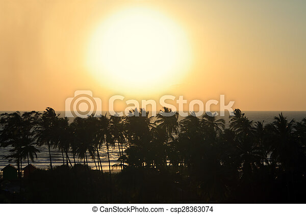 Palm Trees Silhouette At Sunset - csp28363074