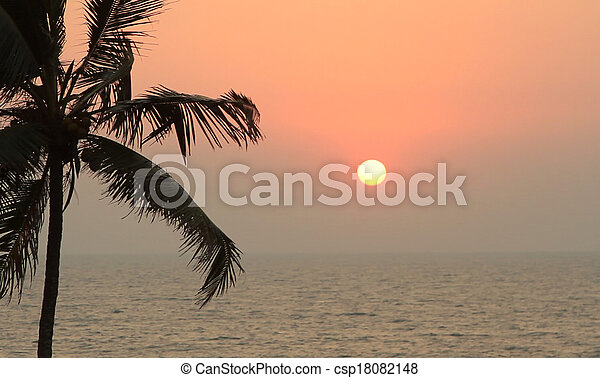 Palm Trees Silhouette At Sunset - csp18082148