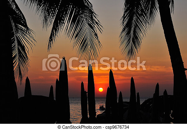 Palm trees silhouette at sunset - csp9676734