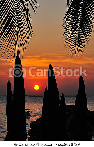 Palm trees silhouette at sunset - csp9676729