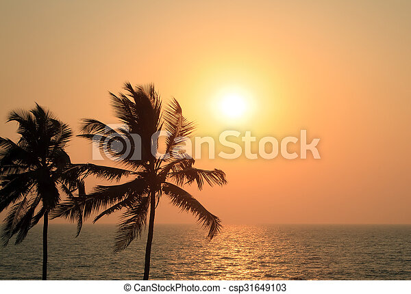 Palm Trees Silhouette At Sunset - csp31649103