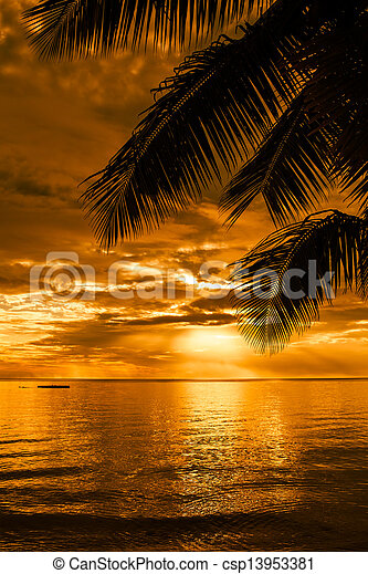 Palm trees silhouette on a beautiful beach at sunset - csp13953381