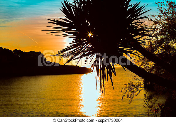 Palm trees silhouette on sunset tropical beach. - csp24730264
