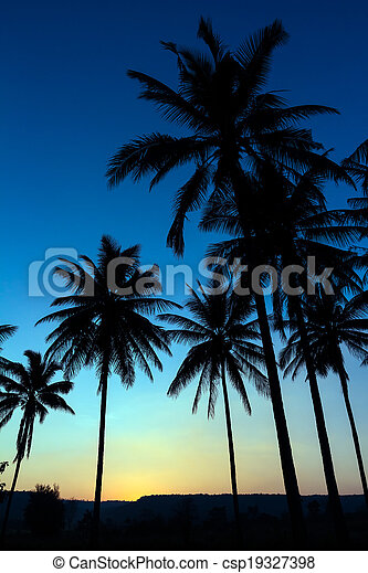 palm trees silhouette with sunset - csp19327398