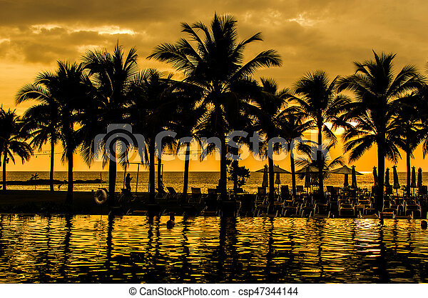 Palm trees silhouettes - csp47344144