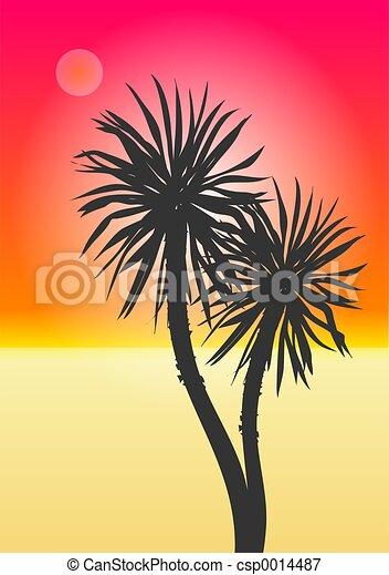 Palm Trees - csp0014487