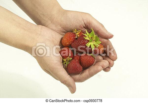 Fresa en la palma - csp0930778