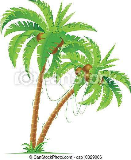 Palme - csp10029006